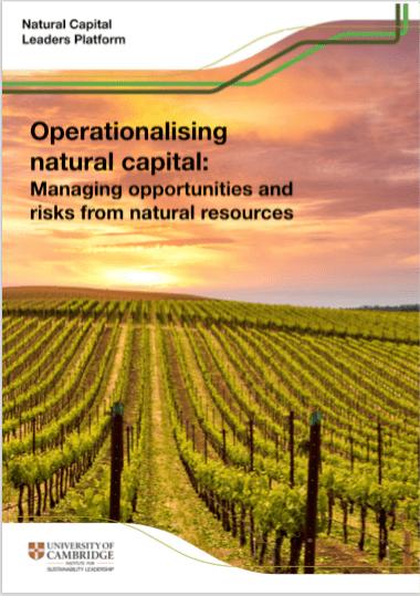 Operationalising natural capital