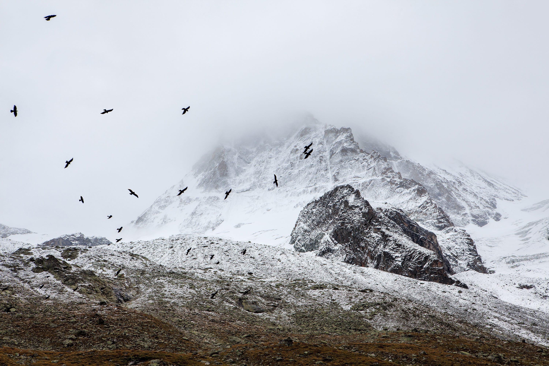 Dent Blanche im Nebel, 4000er im Kanton Wallis, Schweiz. Alps of Switzerland